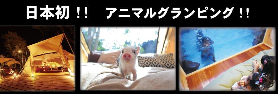 超体験型動物テーマパーク ノースサファリサッポロ